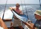 Backlash Sportfishing
